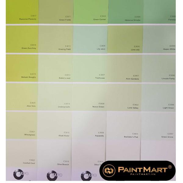 Bộ sưu tập 900 Màu sơn Oexpo Pha máy tự động